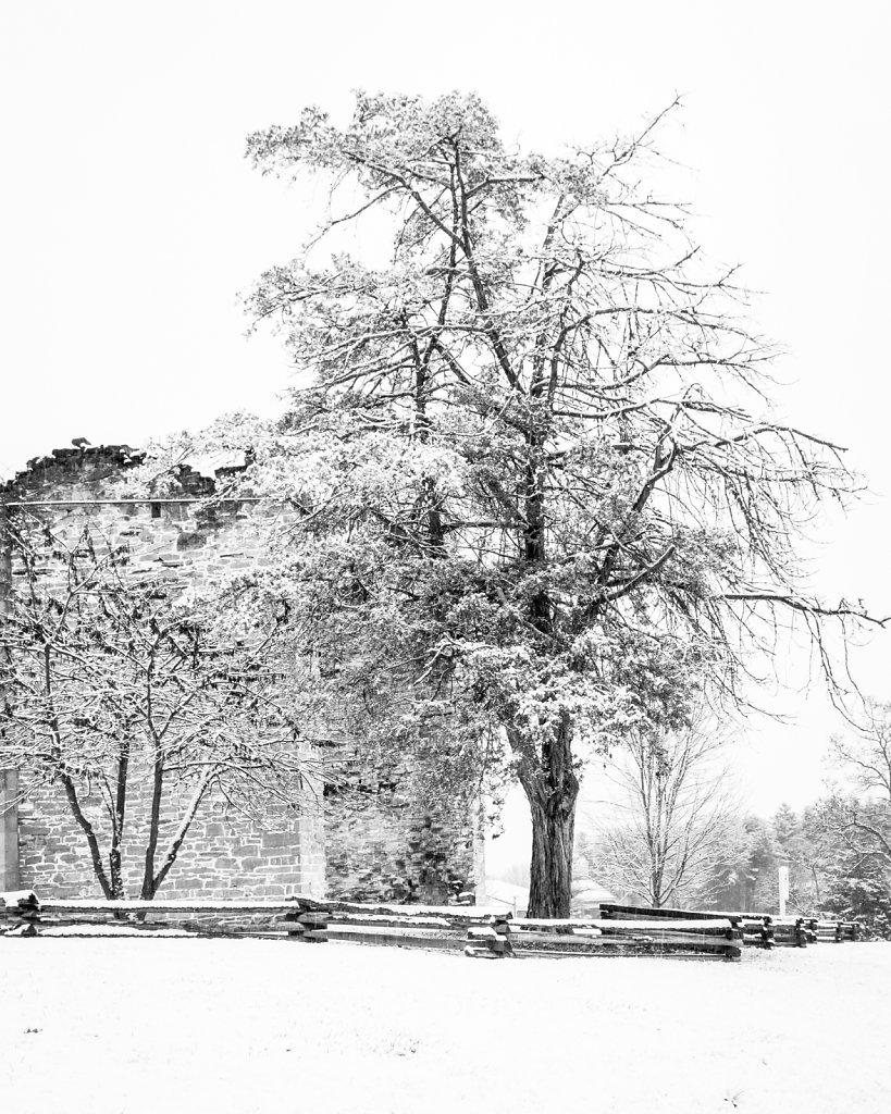 Liberty Hall Ruins with Snow #3